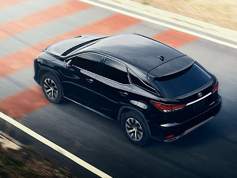 New 2019 Lexus RX 350L Performance