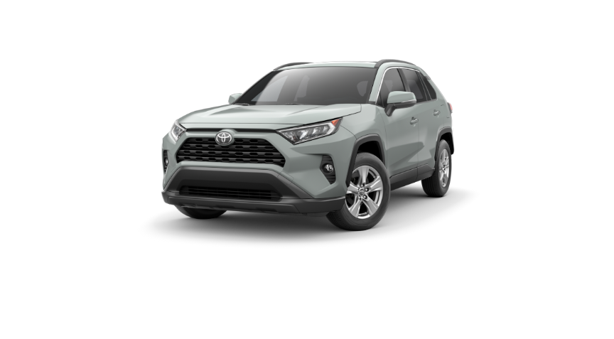2019 Toyota RAV4 XLE in Jacksonville, FL